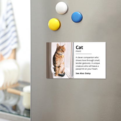 Picture of Cat Definition Magnet