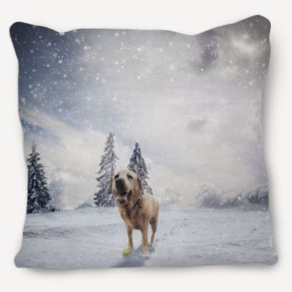 Picture of Adventure Pets Pillow - Winter Wonderland