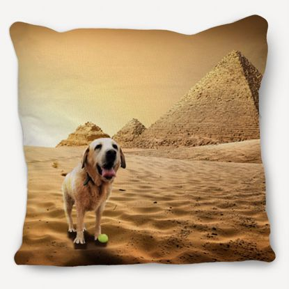 Picture of Adventure Pets Pillow - Ancient Egypt