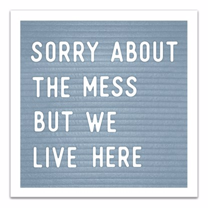 Picture of Sorry About The Mess But We Live Here 14x14 Canvas Wall Art