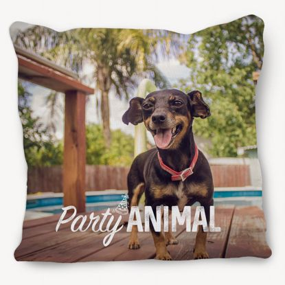 Picture of Party Animal Pillow