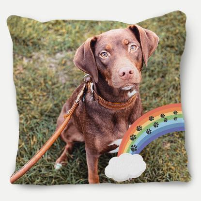 Rainbow Bridge Pillow