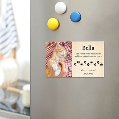 Picture of Paw Prints Magnet