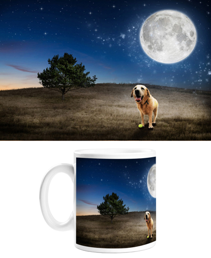 Picture of Adventure Pets Mug - Full Moon