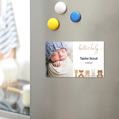 Picture of Baby Animals Birth Announcement Magnet
