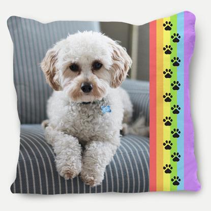 Rainbow Border Pillow
