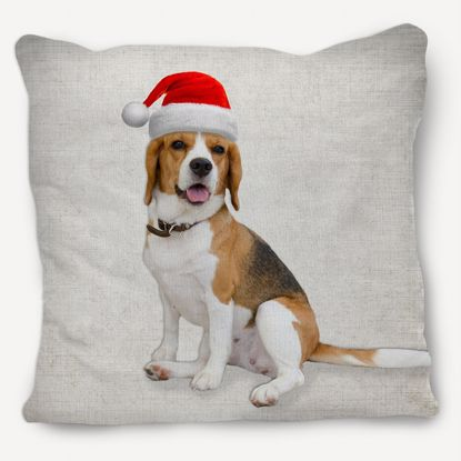 Picture of Adventure Pets Pillow - Santa's Hat 12x12