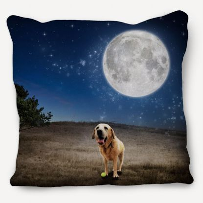 Picture of Adventure Pets Pillow - Full Moon