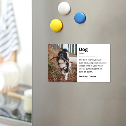 Picture of Dog Definition Magnet