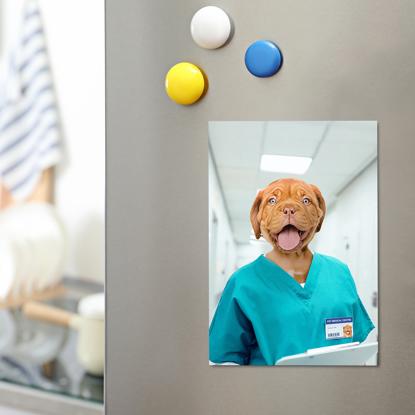 Essential Pet Magnet - Nurse