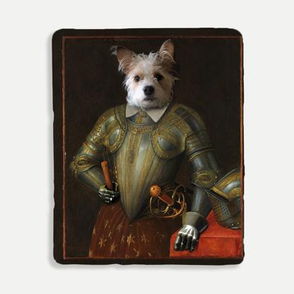 Regal Pet Knight Blanket